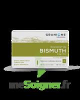 Granions De Bismuth 2 Mg/2 Ml S Buv 10amp/2ml à ALES