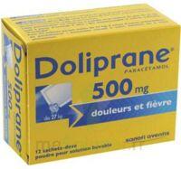 Doliprane 500 Mg Poudre Pour Solution Buvable En Sachet-dose B/12 à ALES
