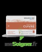 Granions De Cuivre 0,3 Mg/2 Ml S Buv 30amp/2ml à ALES