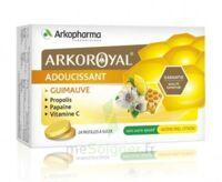 Arkoroyal Propolis Pastilles Adoucissante Gorge Guimauve Miel Citron B/24 à ALES