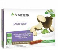 Arkofluide Bio Ultraextract Radis Noir Solution Buvable 20 Ampoules/10ml à ALES