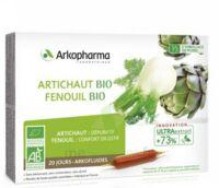 Arkofluide Bio Ultraextract Artichaut Fenouil Solution Buvable 20 Ampoules/10ml à ALES