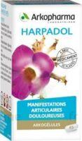 Arkogelules Harpagophyton Gélules Fl/150 à ALES