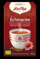 Yogi Tea Echinacee à ALES