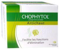 Chophytol Cpr Enr 6plaq/30 à ALES