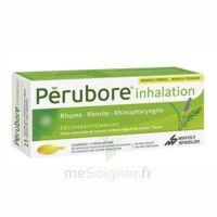 Perubore Caps Inhalation Par Vapeur Inhalation Plq/15 à ALES
