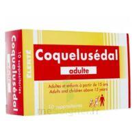 Coquelusedal Adultes, Suppositoire à ALES