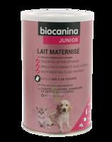 Biocanina Lait Poudre Maternisé B/400g à ALES