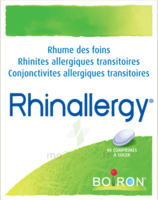 Boiron Rhinallergy Comprimés B/40 à ALES