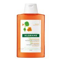 Klorane Capucine Shampooing 200ml à ALES
